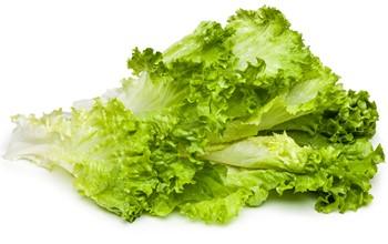 FS Gröna hela blad