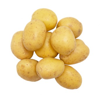 Potatis EKO borstad förkokt