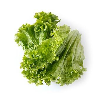 Gröna salladsblad