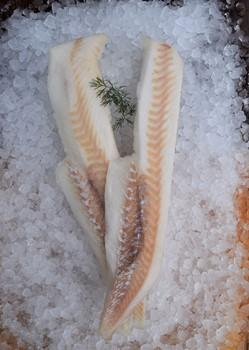Torskfilé sjöfryst 250-500g MSC